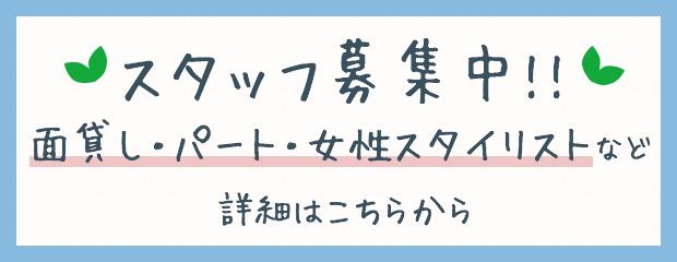 スタッフ募集中!!